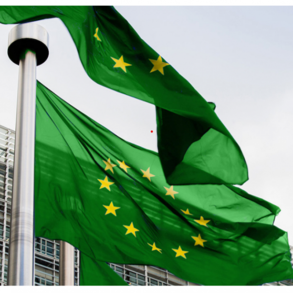 Fotografi av to flagg på flaggstang. Flaggene er grønne med gule stjerner i en sirkel.